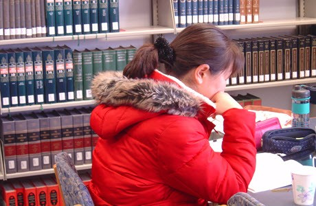 Student in the library at Biblical Theological Seminary