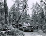 Apache National Forest History Collection